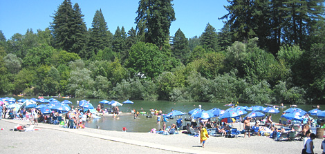 Johnson Beach Guerneville Johnson's Beach